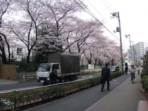2011_0407AQ.jpg