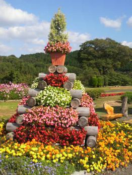 20121024花公園2