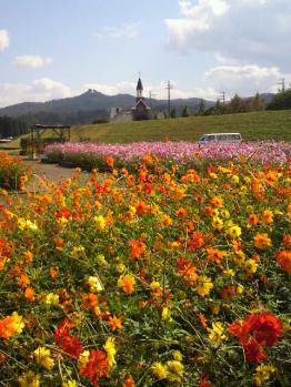 20121024花公園3