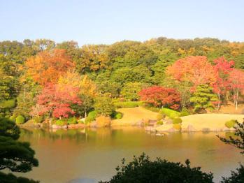 20121112万博公園紅葉2