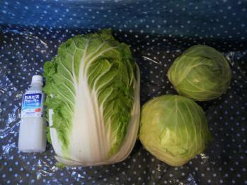 20121208野菜~♪