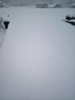 20121210雪