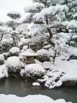 20121210雪2