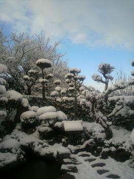 20130104雪