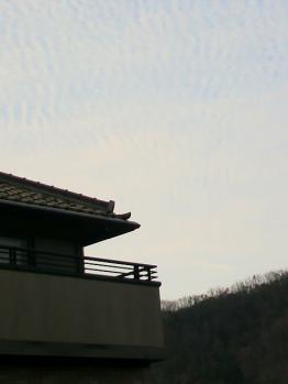 20130107うろこ雲