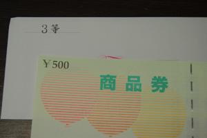 DSC_0017_20101013045059.jpg
