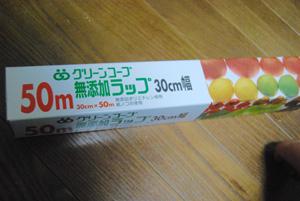 DSC_0029_20100612042616.jpg