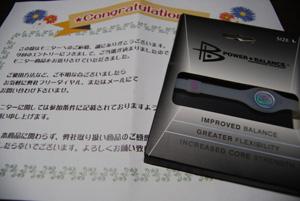 DSC_0222_20100629042426.jpg