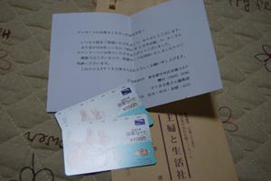 DSC_0385_20101203001216.jpg
