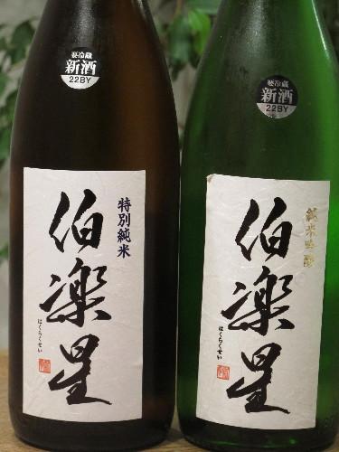 東北酒0003