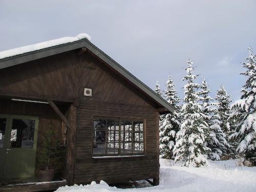 サヒナクリスマス20110001_3