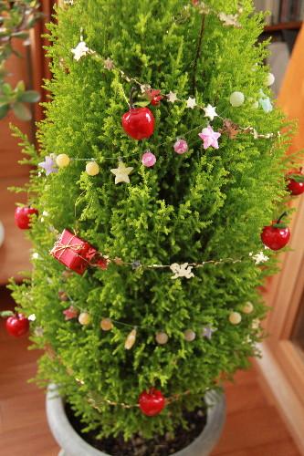 tree0002.jpg