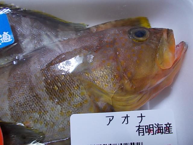 Aohata 20141028