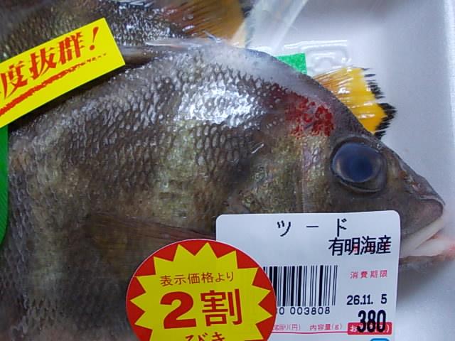 Tsuudo fish 20141104
