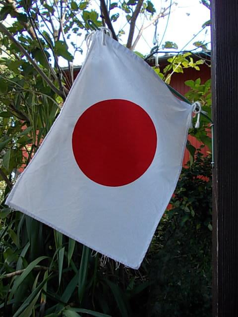 Flag 20141103