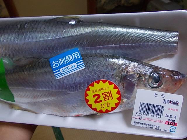 Hira fish 20141207