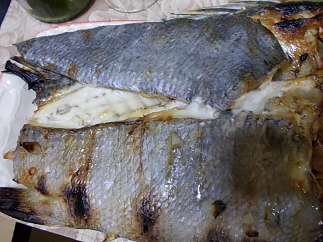 Kokodai koshoudai fish 20141119-3