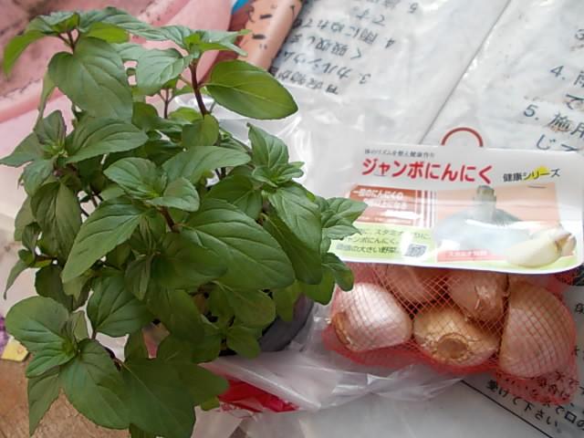 Plants 20141003
