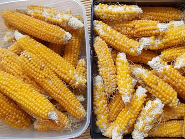 Popcorn 20140921