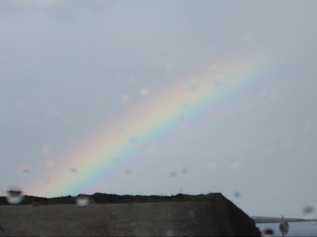 Rainbow 20141201