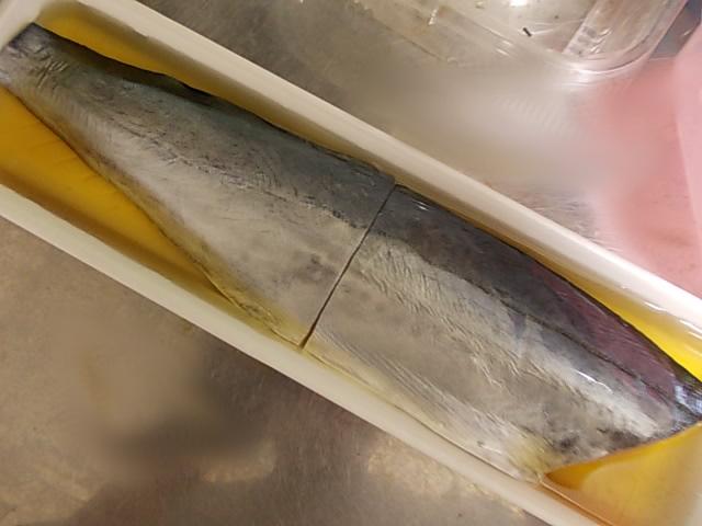 Sawara fish 20141108