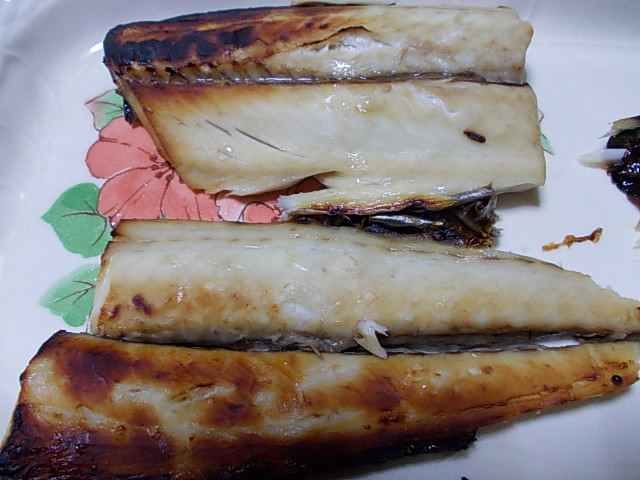 Sawara fish 20141108-2