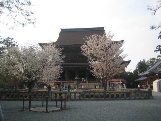 世界遺産 奈良 吉野山 蔵王堂と桜