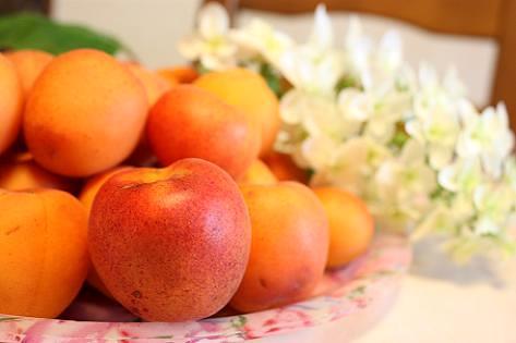 杏を頂いた♪
