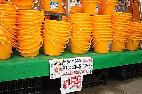 黄色いバケツ♪