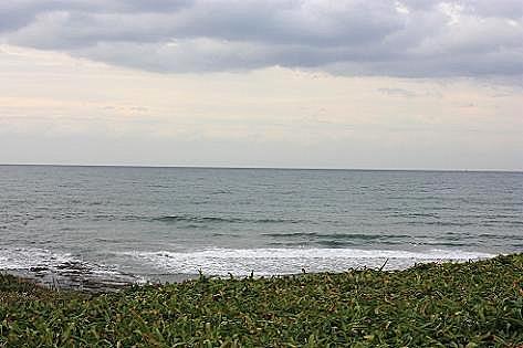 ハマユウの海辺♪