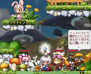 Maple101011-1.jpg