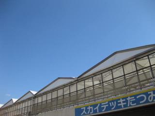 肺炎治療 エピソード 鍼灸(はりきゅう)治療院 東京都葛飾区東新小岩 新小岩 鍼灸