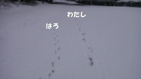 021509.jpg
