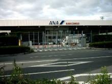はなちゃん・パンナちゃん・リンちゃんママのブログ-伊丹空港