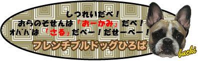 ぶちバナー10.05