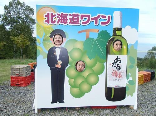 小樽ワイン祭り ぶどう
