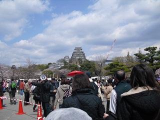 平成22年4月3日観桜会2