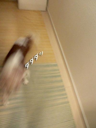 141204_4.jpg