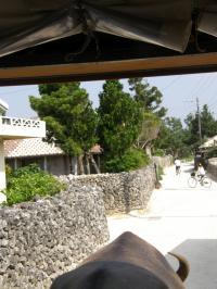 竹富島の街3
