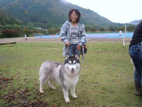 DSCN7241y_20111112111421.jpg