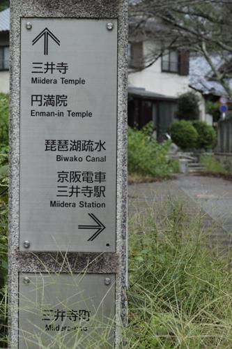 11・三井寺へ