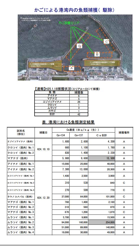 福島第一原子力発電所20km圏内海域における魚介類の測定結果(PDF 1
