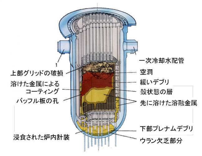 photo_yamana2.jpg