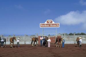 3パーカー牧場