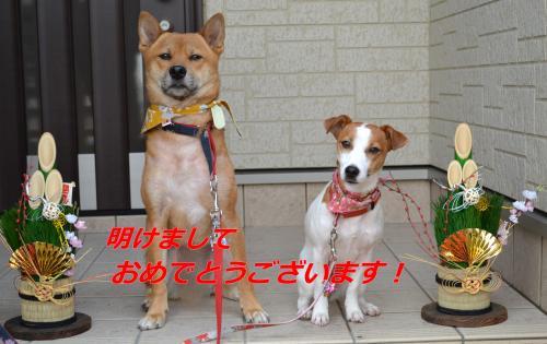 234_convert_20120101203046.jpg