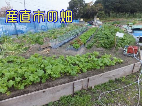 2014_1129_104250.jpg