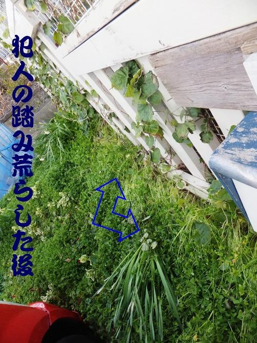 2014_1218_162910.jpg