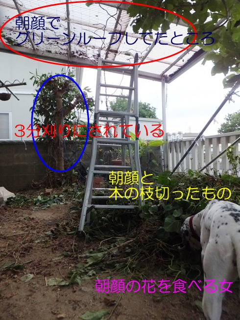 blog_1012_165452.jpg