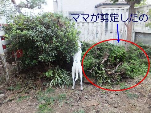 blog_1012_170422.jpg