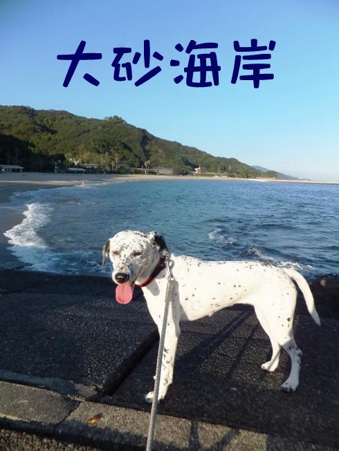 blog_1024_164655.jpg